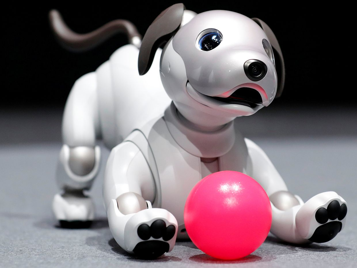 A photo of the new aibo robot dog from above.