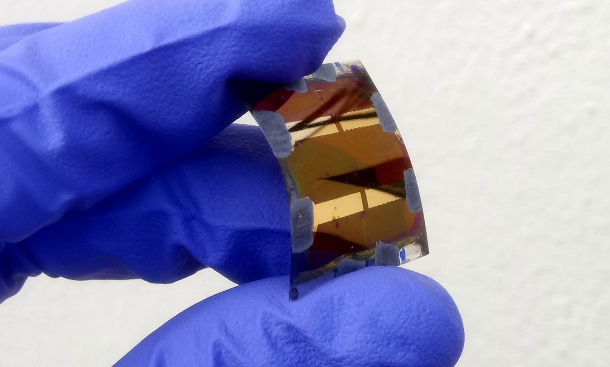 A researcher holds a curved piece of ultra-thin flexible glass with perovskite solar cells.