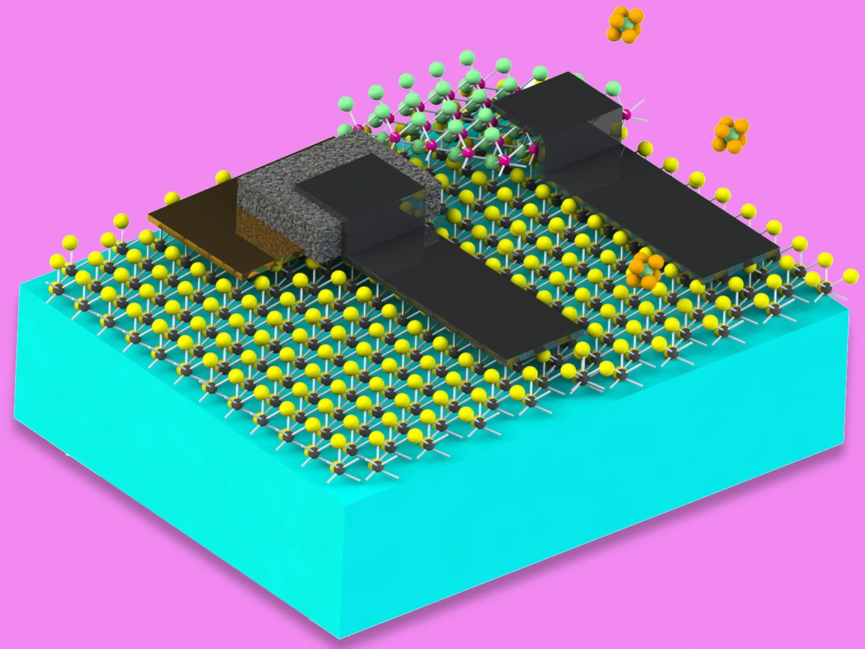 A schematic diagram of a microscopic chemical detection machine depicting a micrometer-sized polymer particle coated with a nanoelectronic circuit.