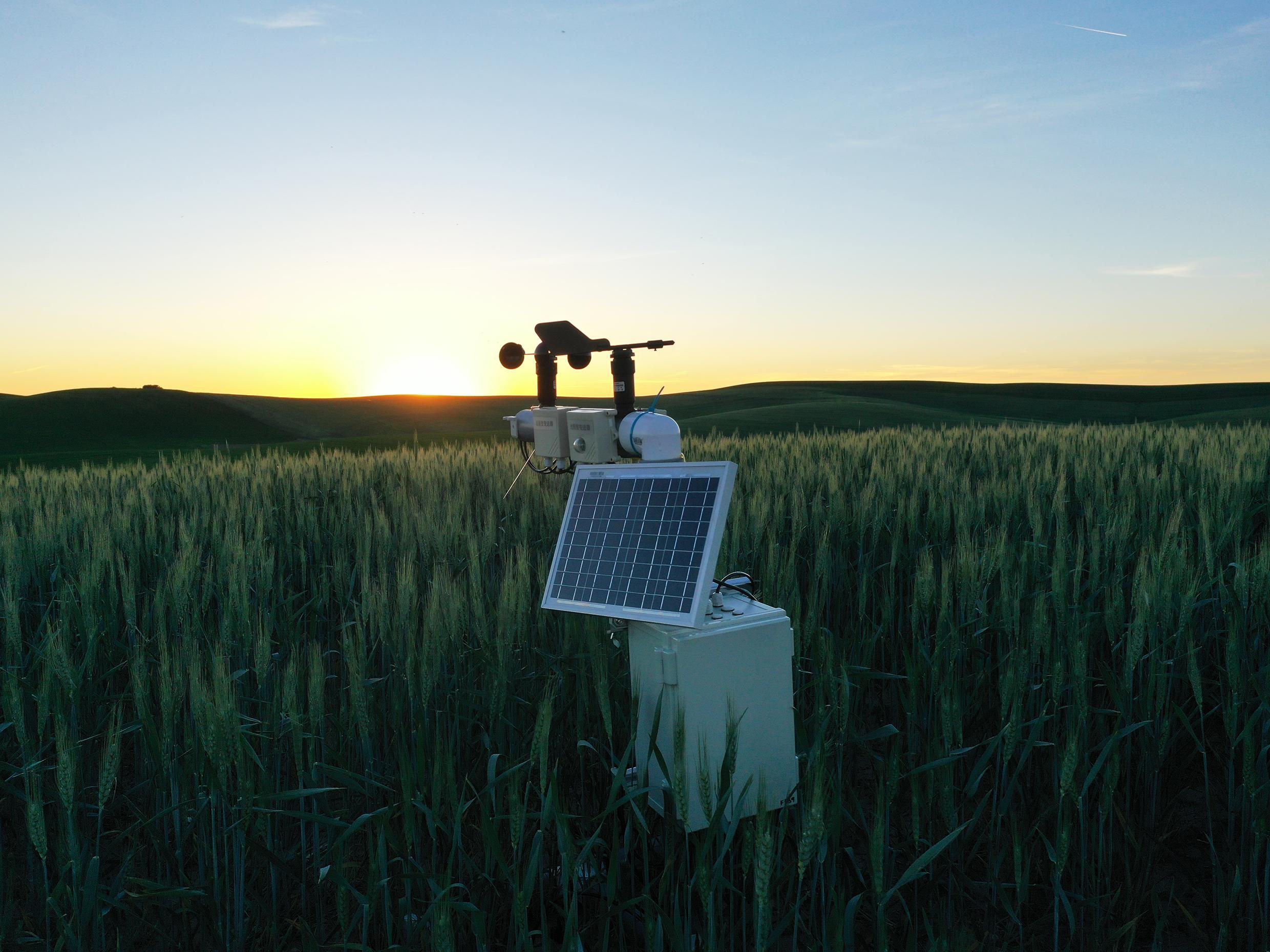 A sensor that collects the local climate data that the DeepMC framework uses
