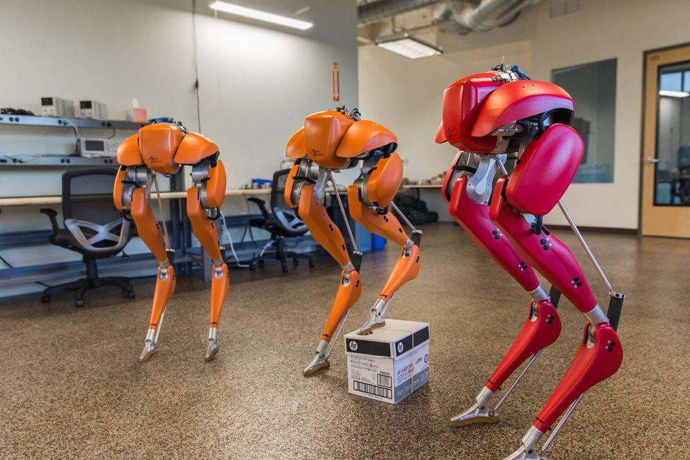Agility Robotics Raises $8 Million for Commercial Bipedal Robots