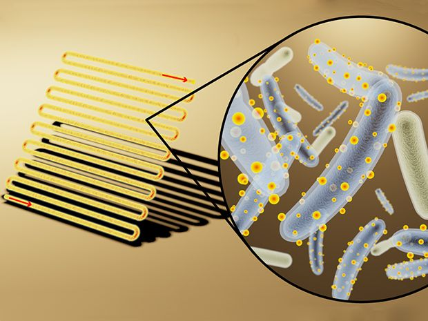 Artist's rendering of bioreactor (left) loaded with bacteria decorated with cadmium sulfide, light-absorbing nanocrystals (middle) to convert light, water and carbon dioxide into useful chemicals (right).