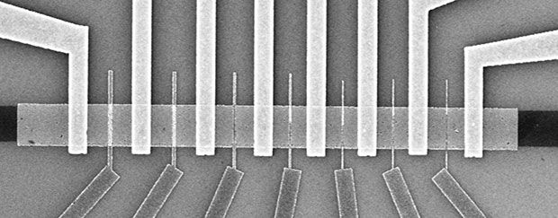 Black and white microscope image of molybdenum disulfide transistors shows vertical bars at top crossing a horizontal bar and vertical bars at bottom intersecting the spaces between them.
