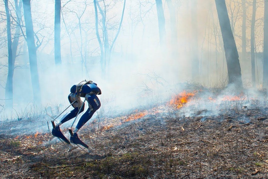 Cassie Blue walks on fire