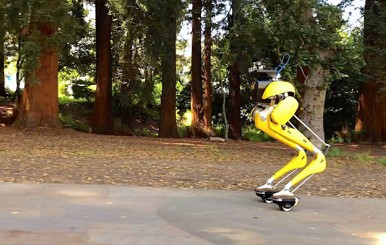 Cassie Cal riding a pair of Hovershoes around the UC Berkeley campus.