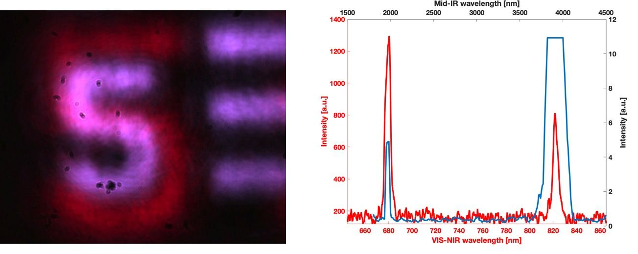 Converted image and spectra of original and output
