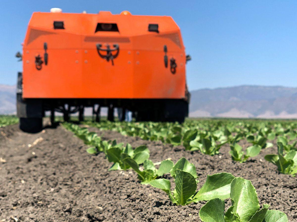 FarmWise's AI-powered robot driving autonomously through crops.