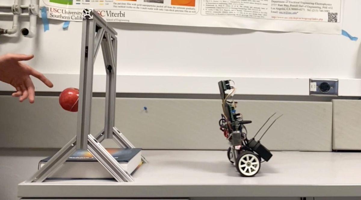 Memristor-based robot