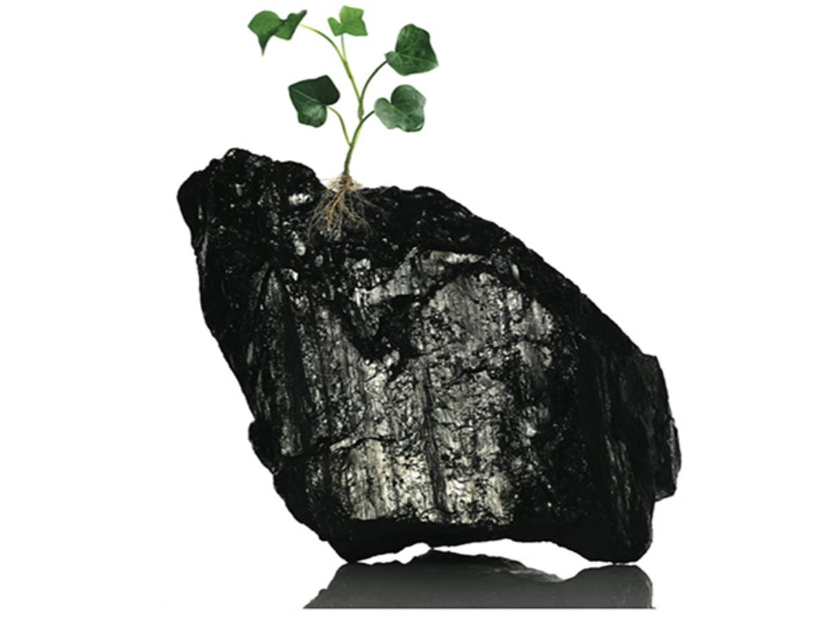 Winner: Restoring Coal's Sheen