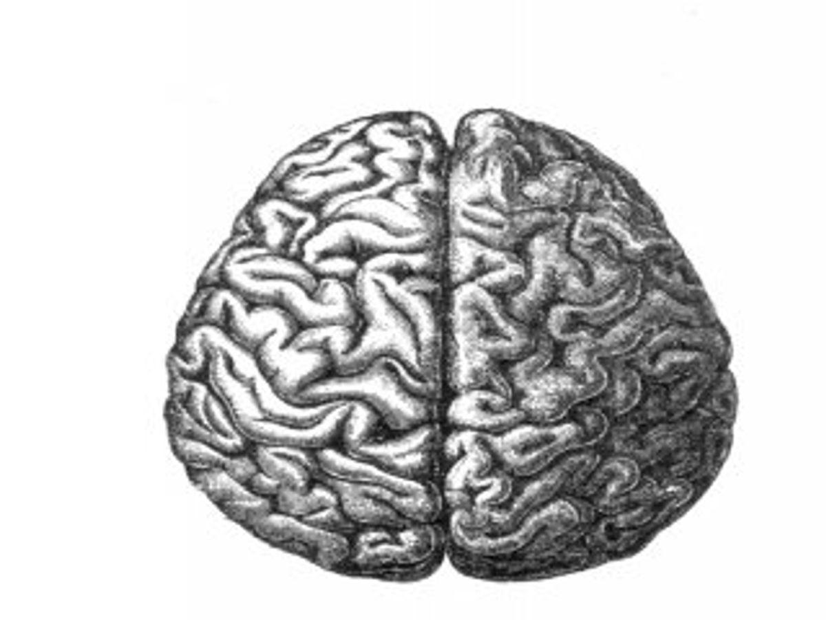 Researchers Create A Schizophrenic Computer