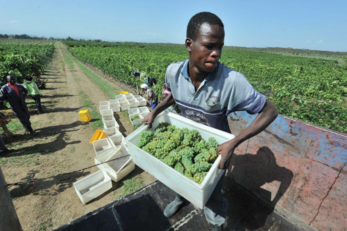 Africa: Continent of Plenty