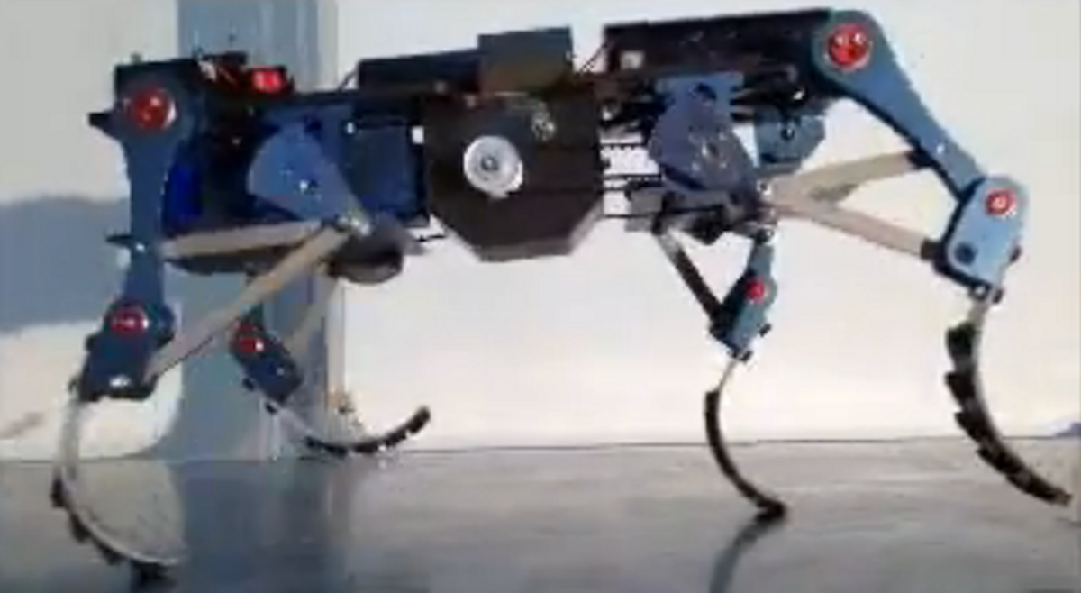 South Korean Cheetaroid Wants to Join the Cat Robot Race
