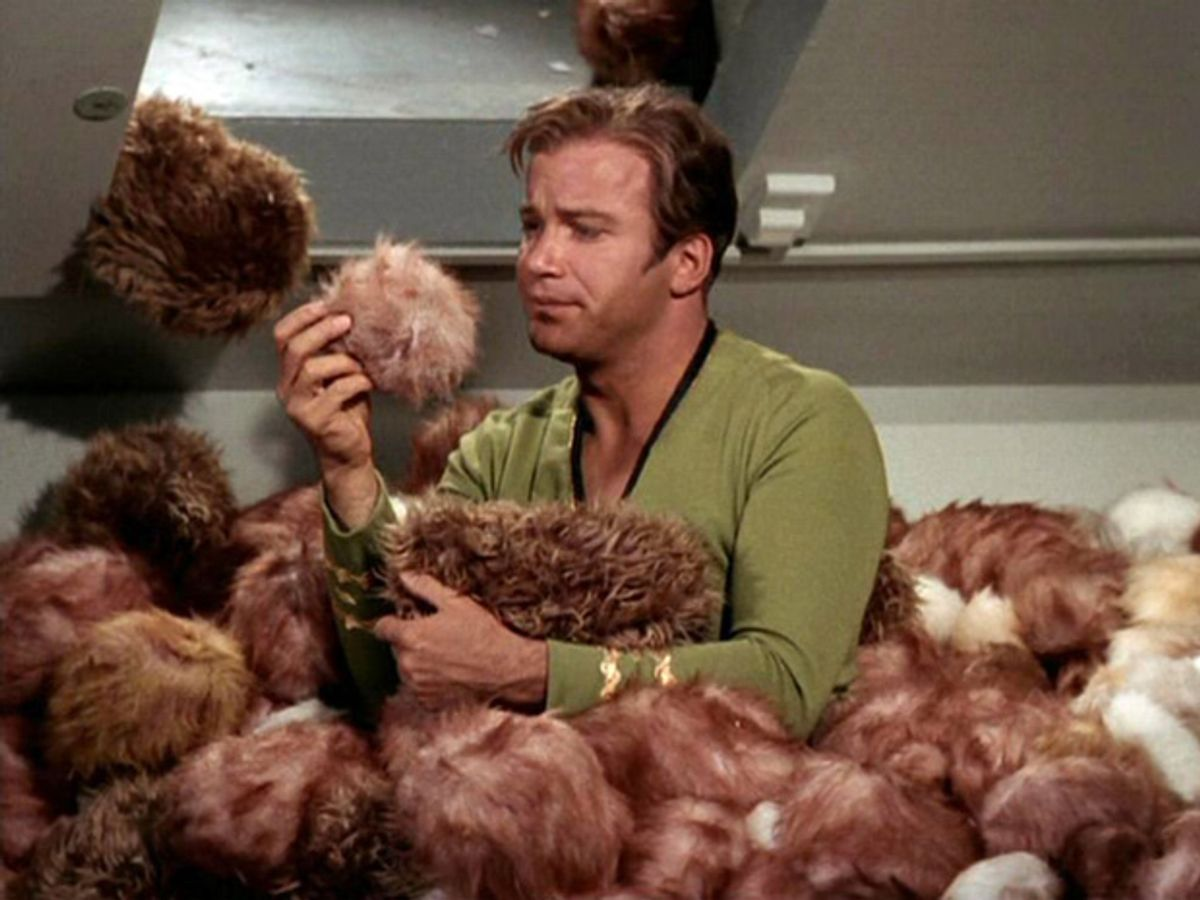 New Report Says Cyberthreats Multiplying Like Tribbles