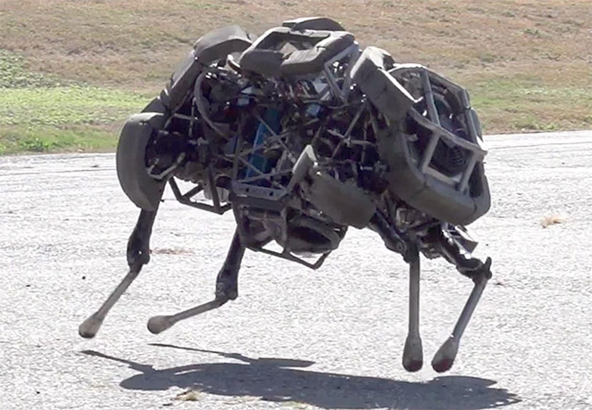 Video Friday: The Year in Robots