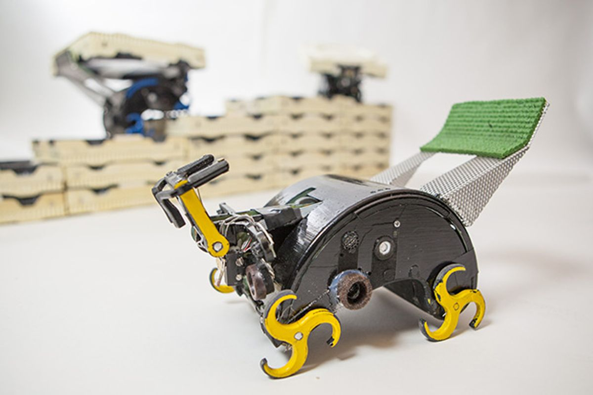TERMES Project Concludes, Insect Robots Declare Victory