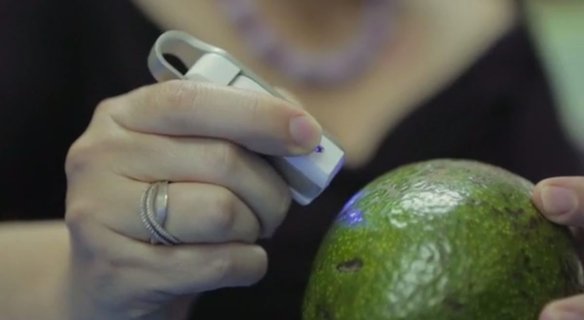 A handheld spectroscopy tool called the SCiO shines a blue light on an avocado to check its molecular composition.