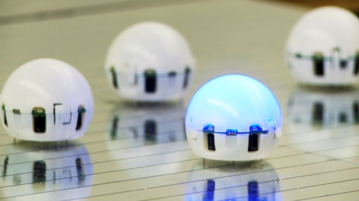 Researchers Want to Build Swarm of 1000 Droplet Robots
