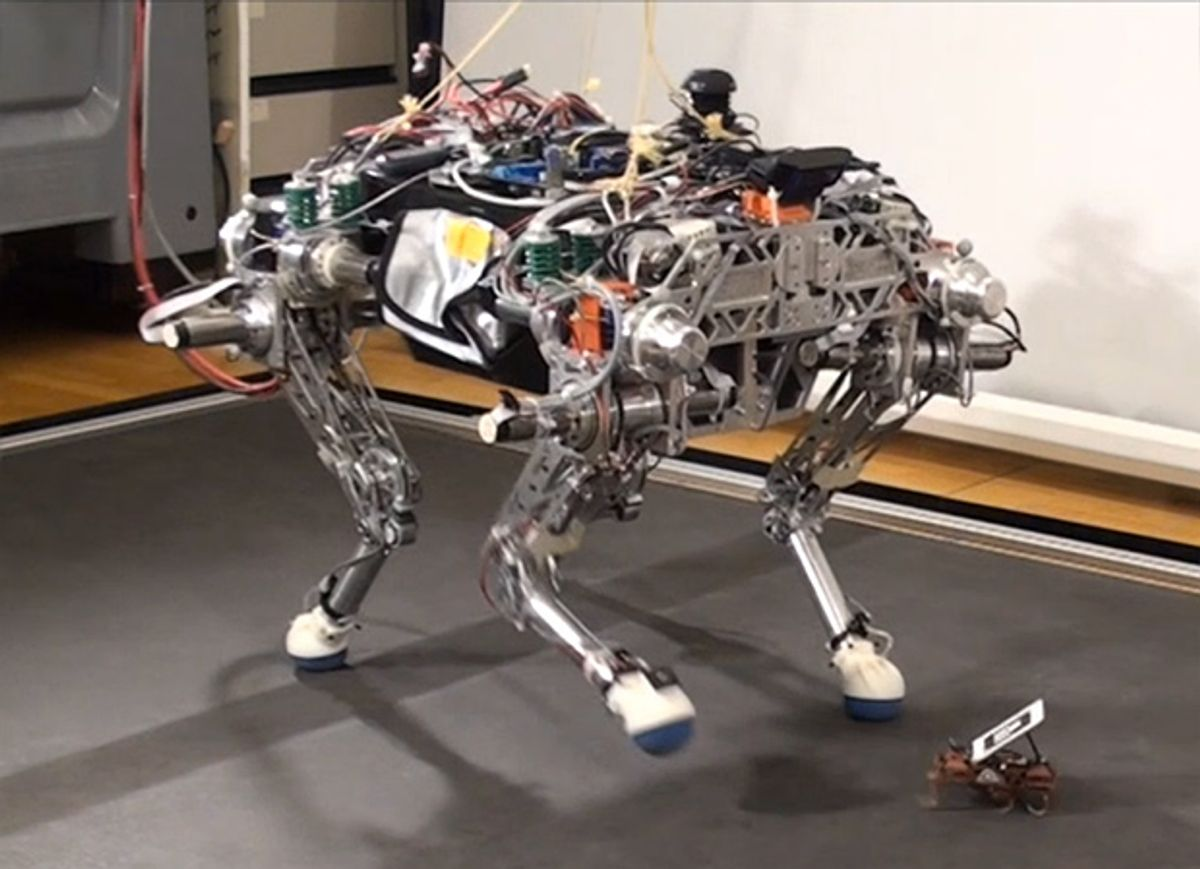 Big and Little Legged Robots Team Up to Conquer Terrain