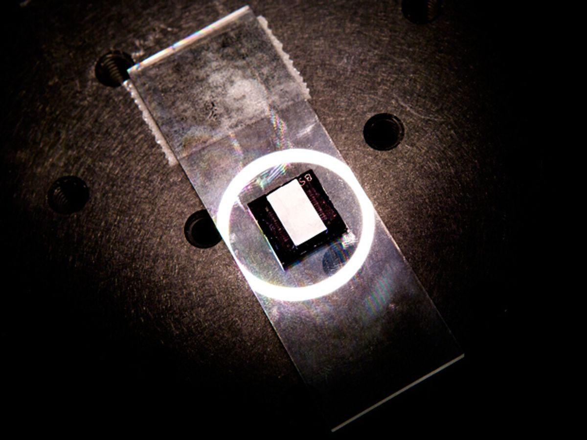 A microscope slide with a ring of light surrounding a black square surrounding a white rectangle.