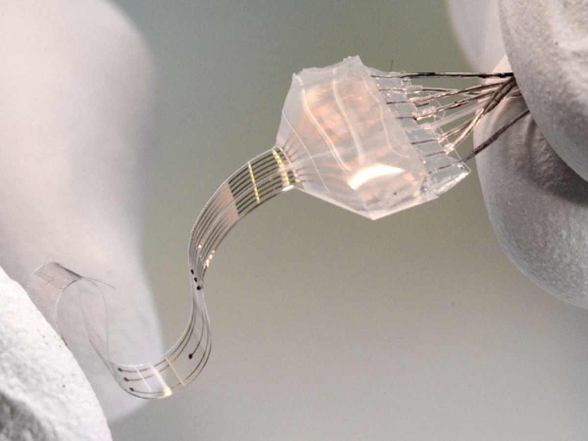 Stretchy Electrodes Enable Long-Lasting Brain Implants