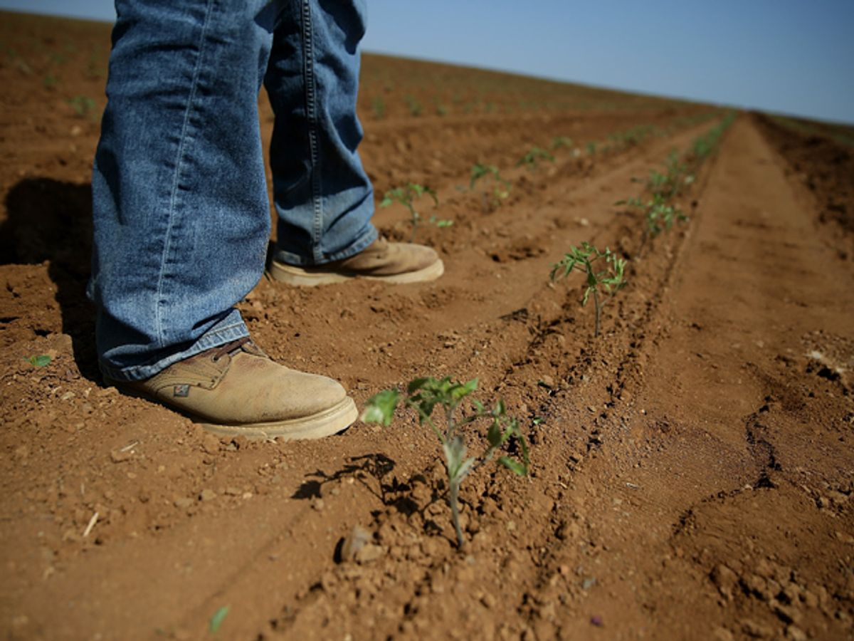 The Promise of Precision Agriculture in Drought-Ridden California