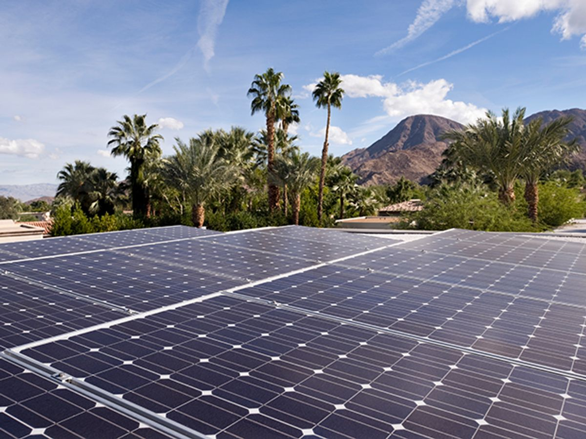 Photovoltaic panels near some palm trees