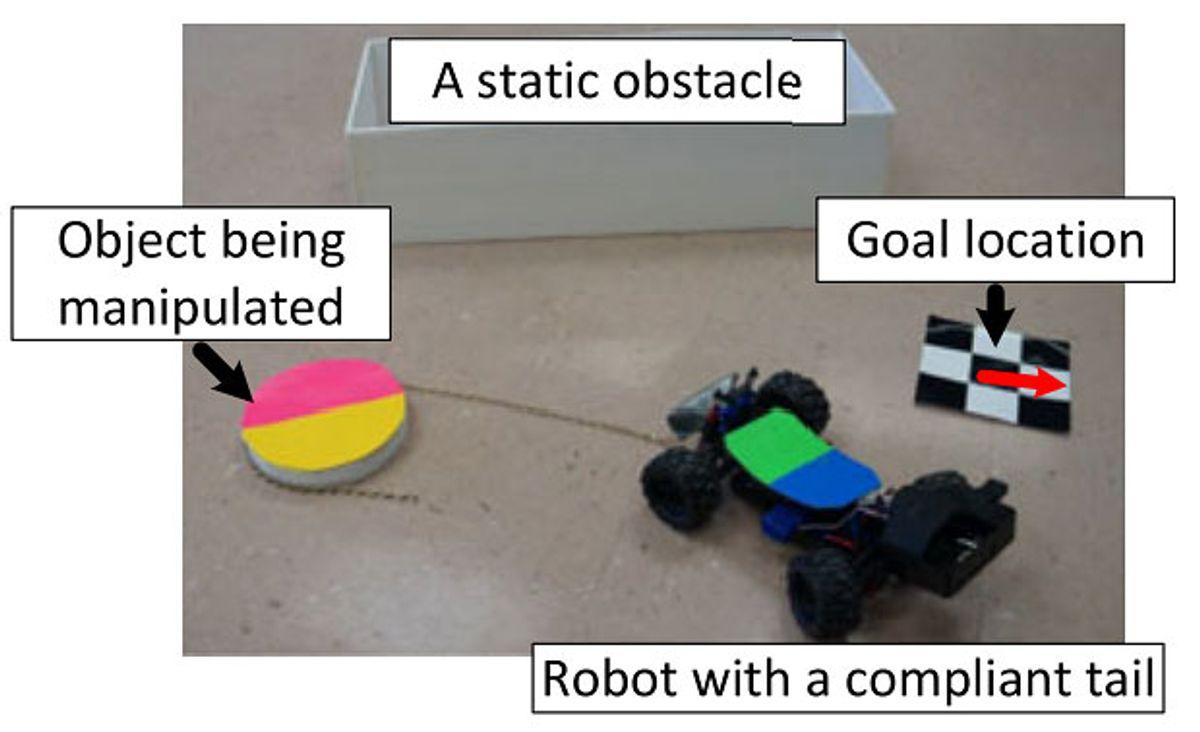 Whip tail robot