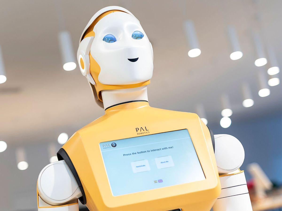 Photo of PAL Robotics ARI robot
