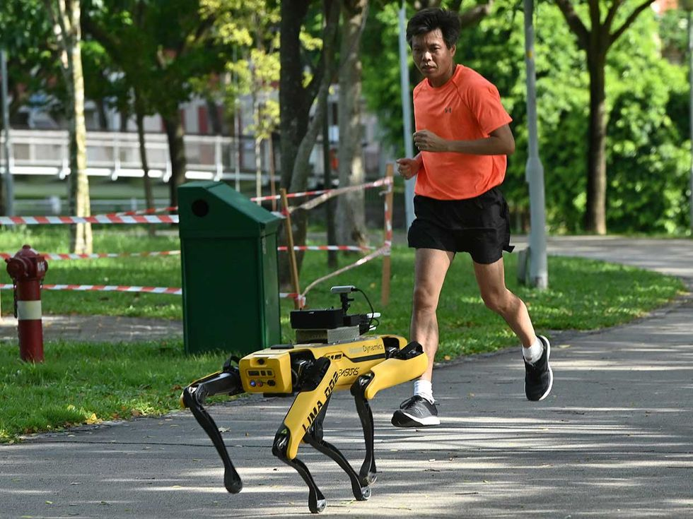 In Singapore, the Bishan-Ang Moh Kio Park unleashed a Spot robot dog (below), developed by Boston Dynamics, to search for social-distancing violators. Spot wonu2019t bark at them but will rather play a recorded message reminding park-goers to keep their distance.