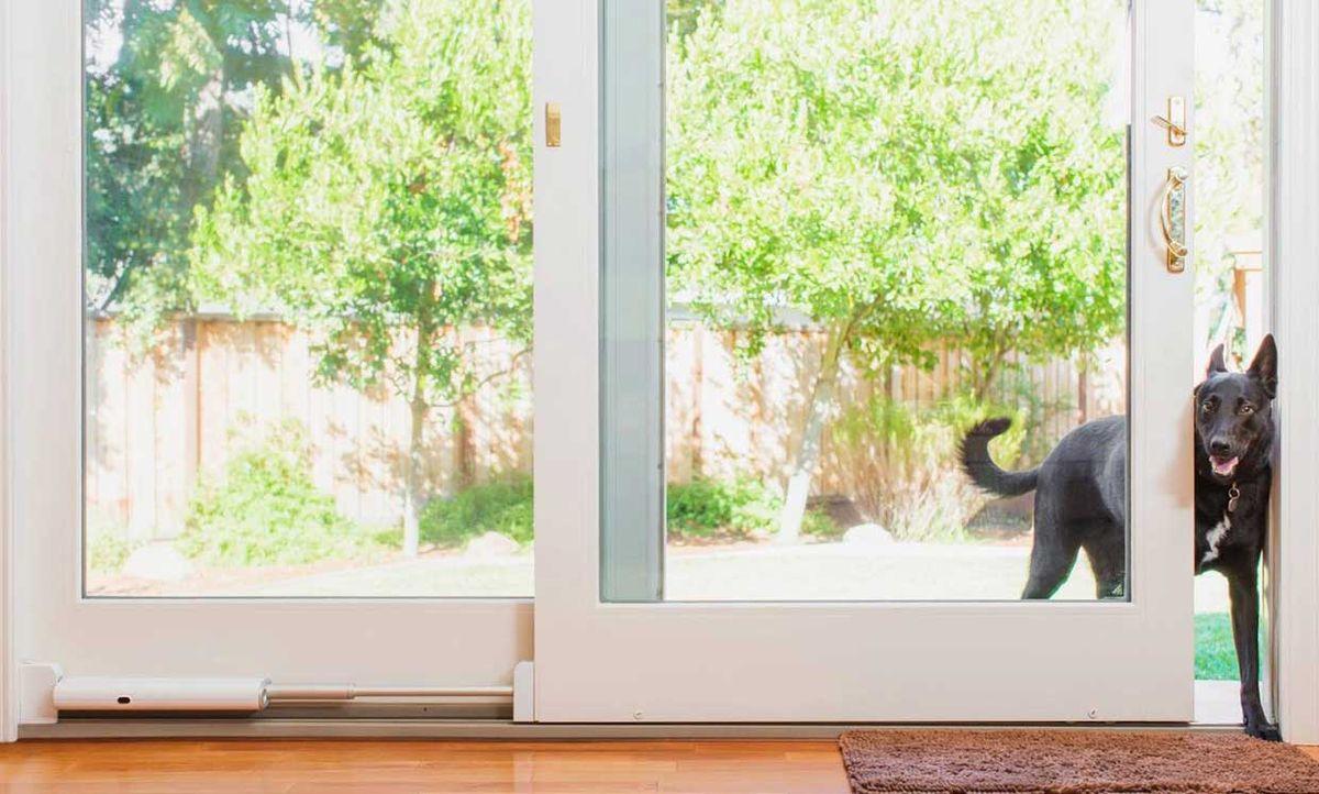 Wayzn's smart sliding door adapter, opened so a dog can enter