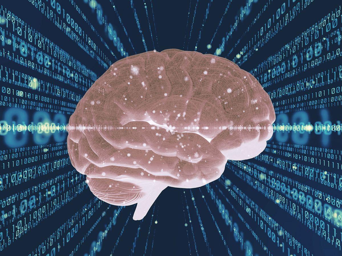 brain and computer code
