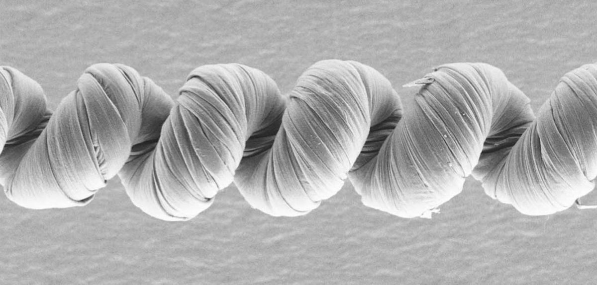 """This scanning electron microscope image shows a coiled artificial """"muscle"""" made from carbon nanotubes and coated with poly(sodium 4-styrenesulfonate)."""