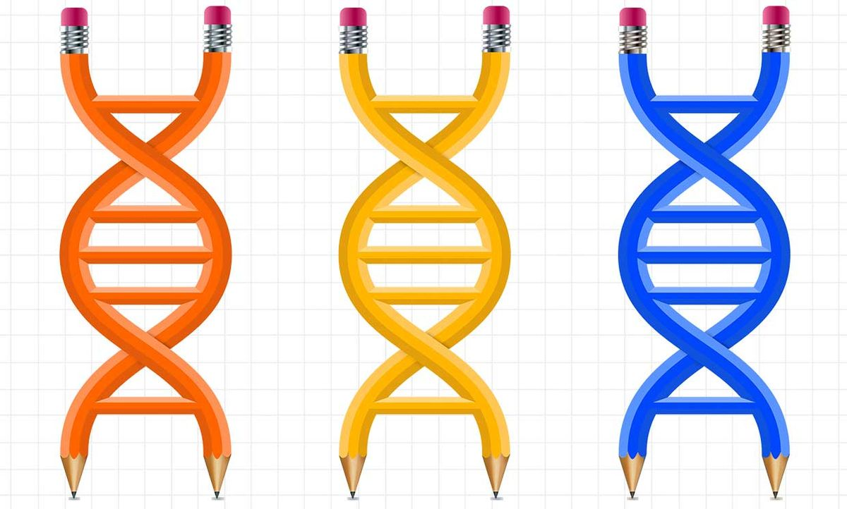 Illustration of DNA as pencils, on graph paper