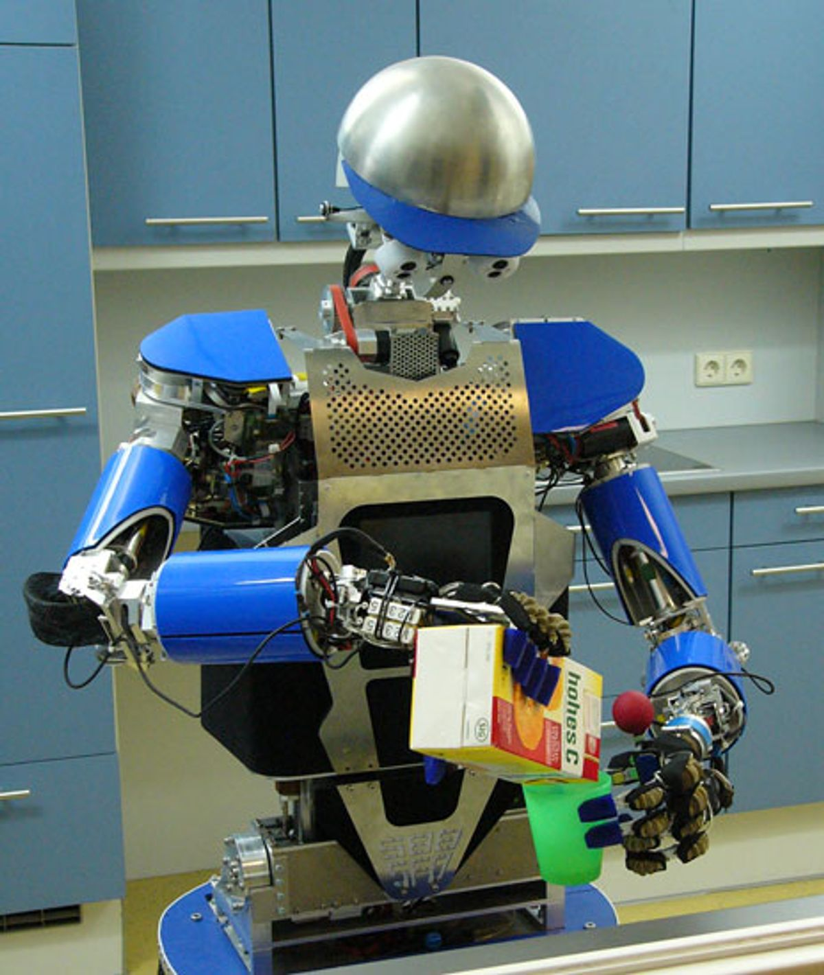 A Robot's Body of Knowledge