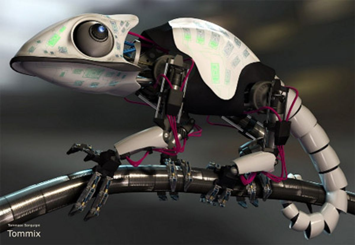 Japanese Researchers Developing Robotic Chameleon, Tongue First