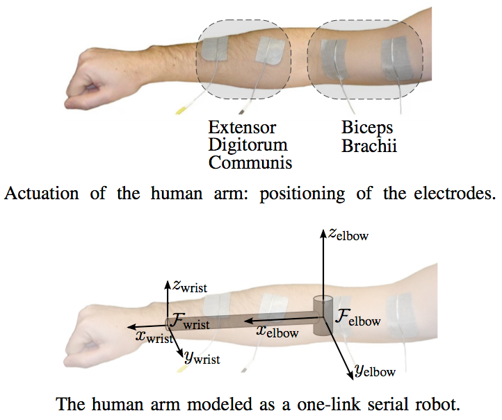 robot controls human arm using electrical stimulation