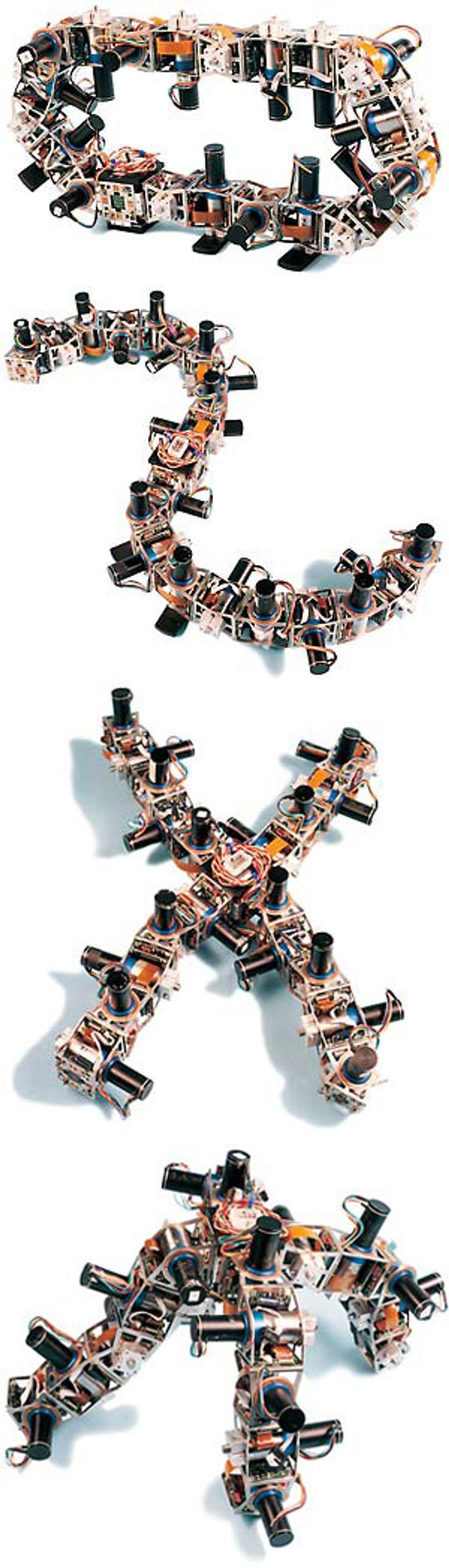Modular Robots