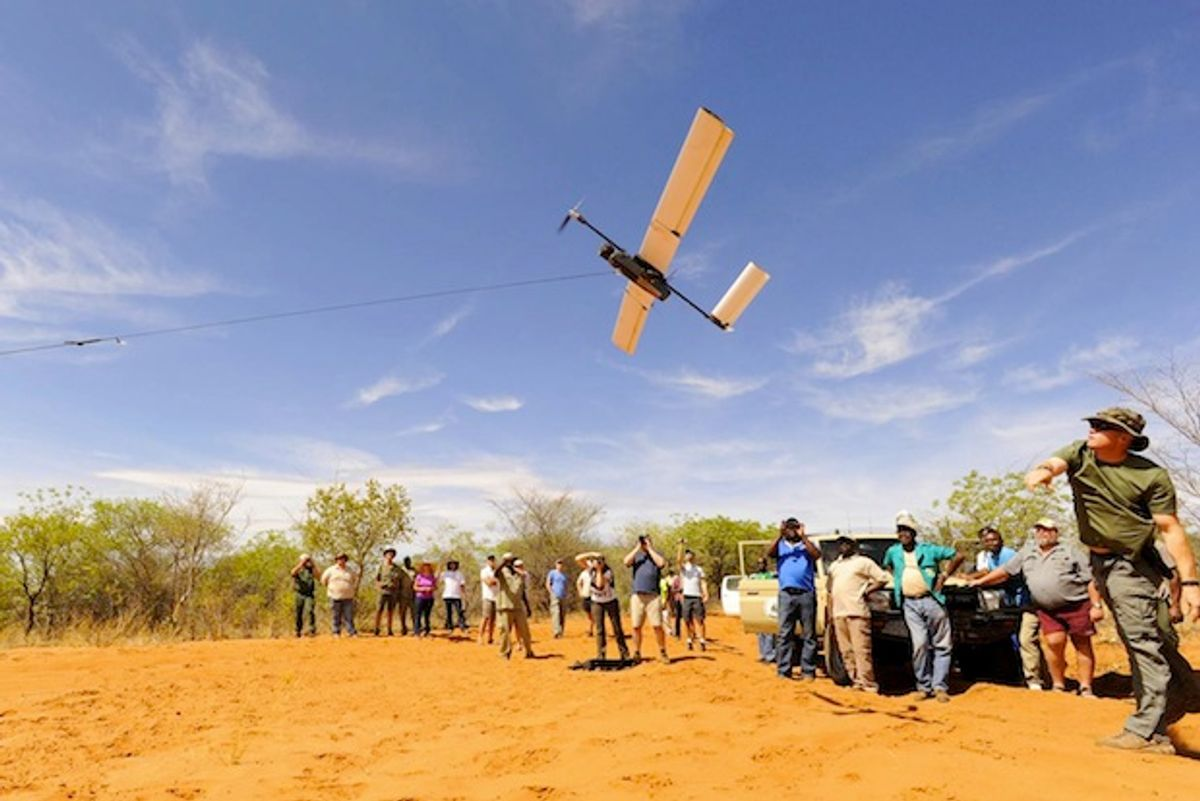 Google Grant to Help WWF Monitor Endangered Species with Drones