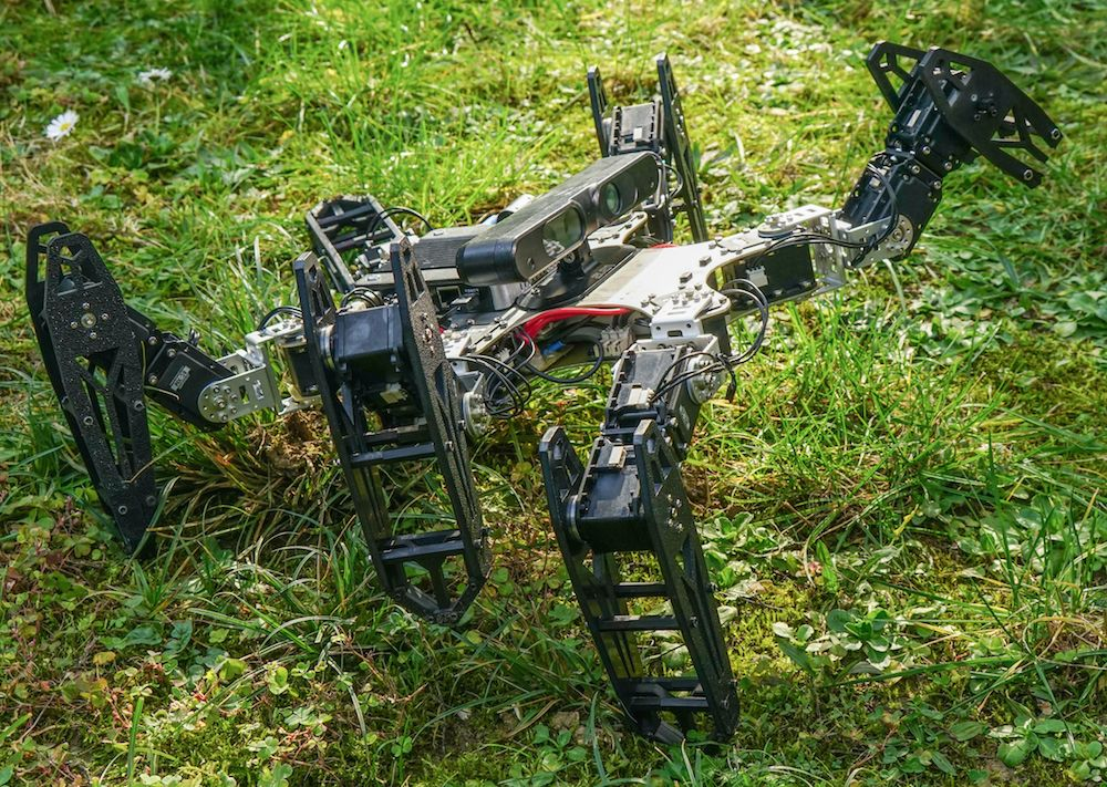 Damage Recovery Algorithm Could Make All Robots Unstoppable