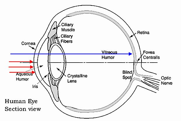 eye diagram showing lidar visibility to retina