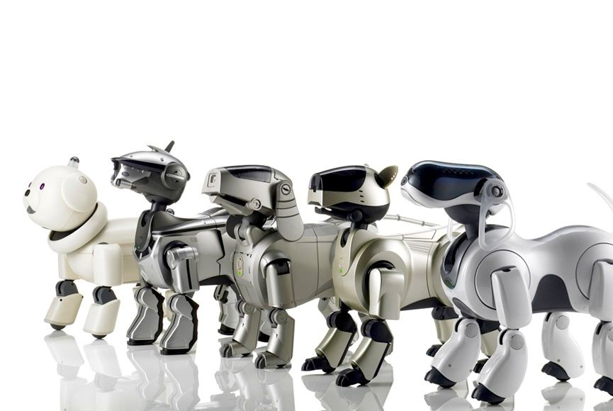 Five generations of Aibo robot dog.