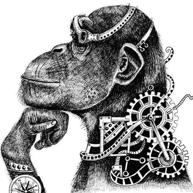 Intelligent chimp illustration