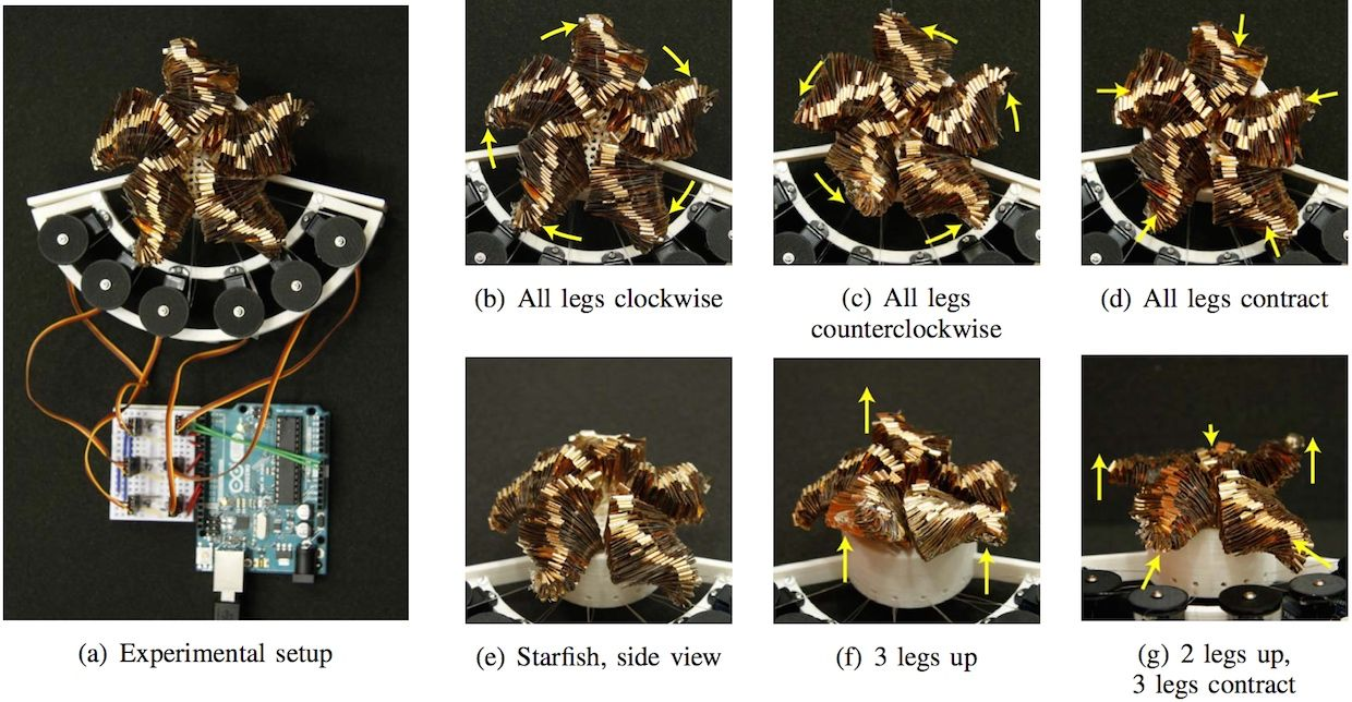 Self-folding origami-inspired robot from MIT