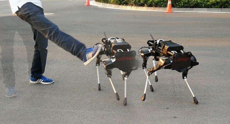 Kick test of Laikago quadruped robot