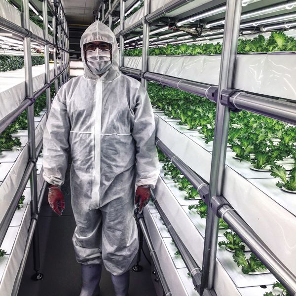 Photo of the author touring the Espec Mic VegetaFarm plant factory.