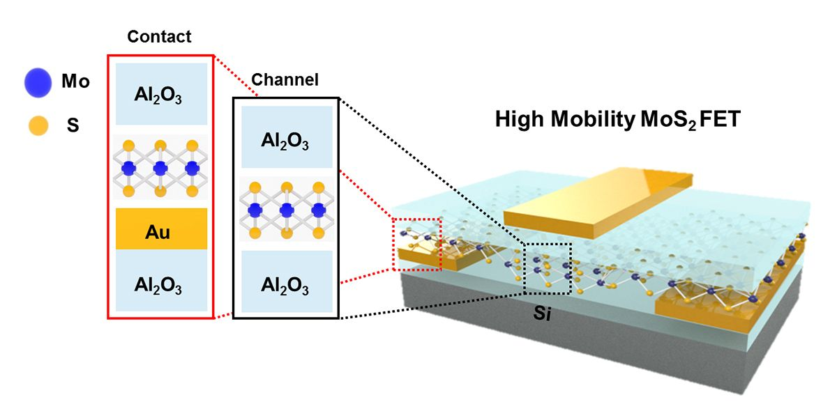 Schematic of high-mobility MoS2 TFT using an Al2O3 passivation layer.