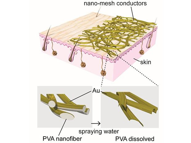 A diagram of the PVA nanofibers