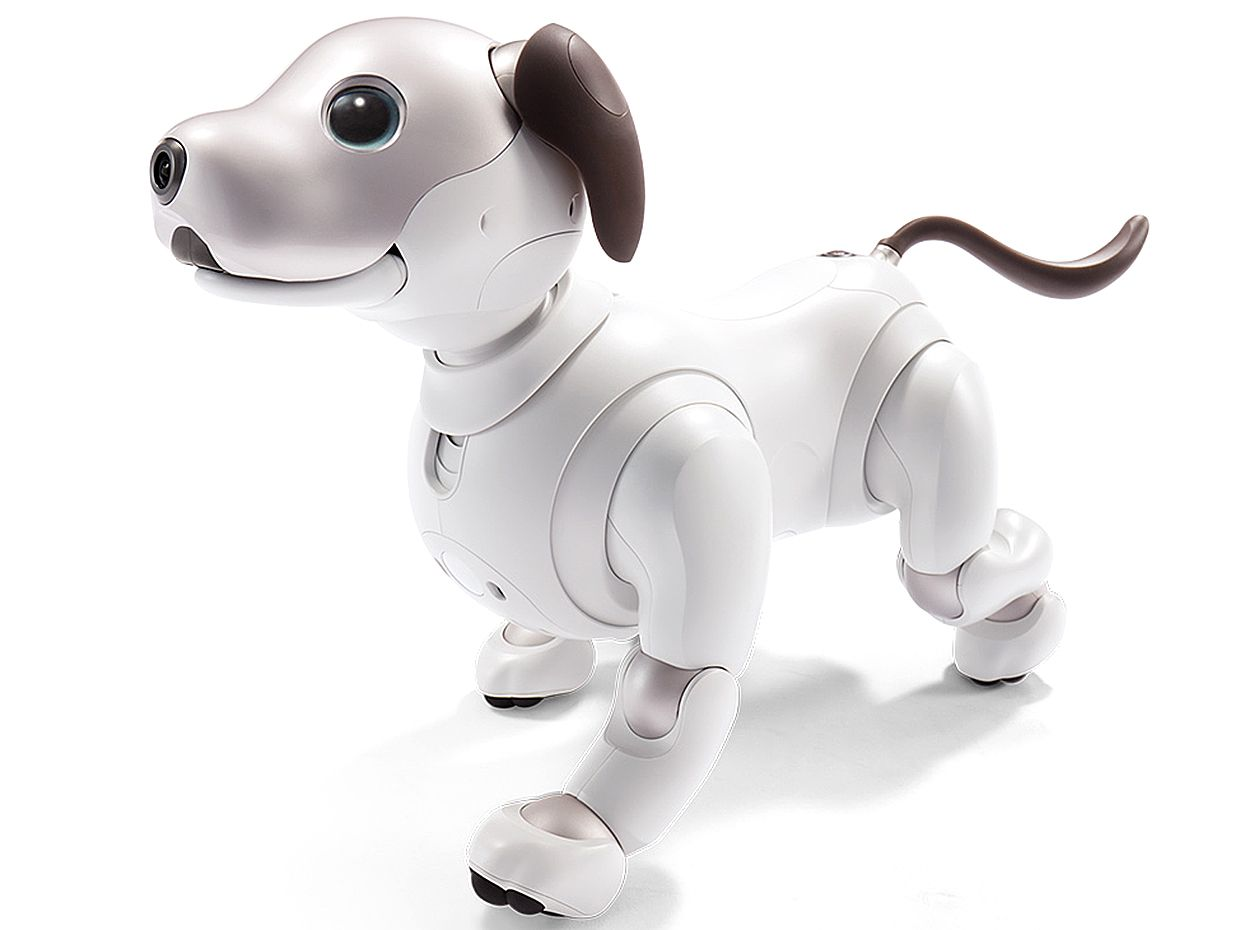 Sony Unleashes New Aibo Robot Dog Ieee Spectrum