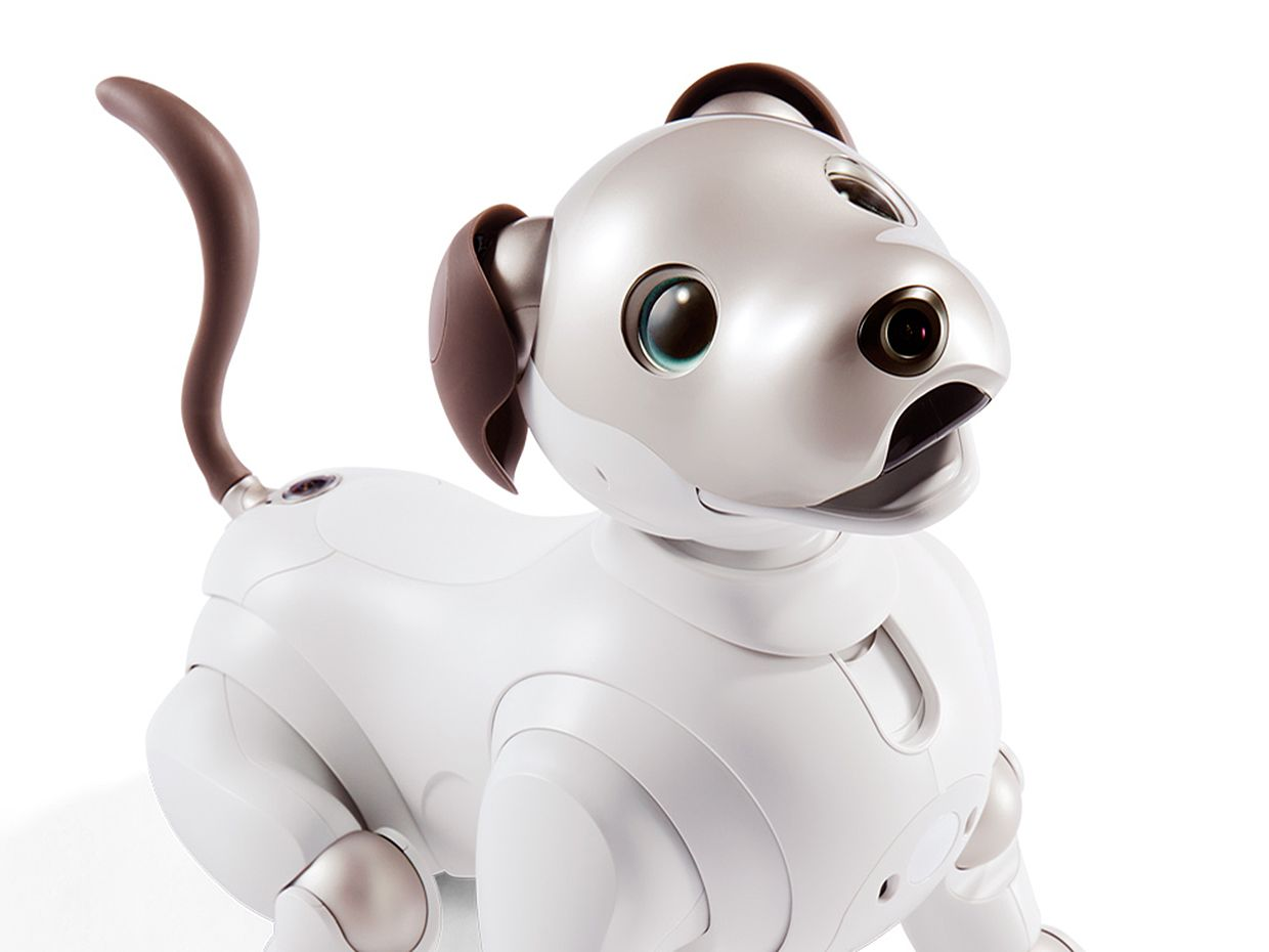 Photo of the new Sony Aibo robot dog
