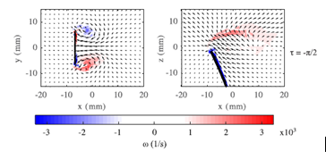 Figure 3: The COMSOL simulation shows the vorticity and the velocity field at two positions during oscillation.